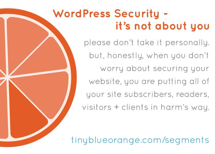 tiny-blue-orange-segments_wordpress-security_chap-2