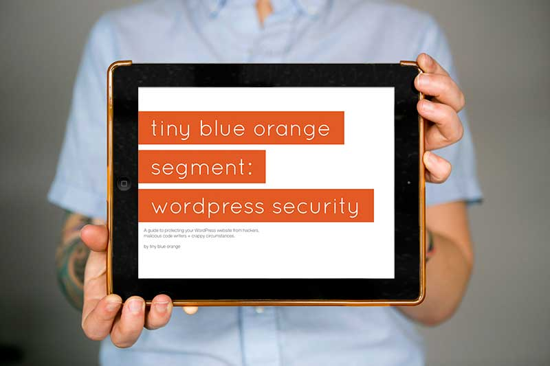 tinyblueorange_ipad-holding_segment-security