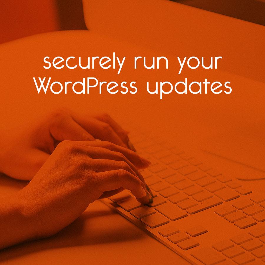 run your website's WordPress updates securely // tiny blue orange