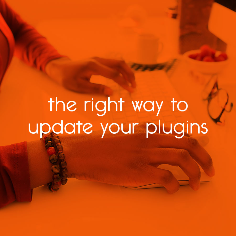 the right way to update your plugins // tiny blue orange