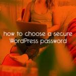 how to choose a secure WordPress password // tiny blue orange
