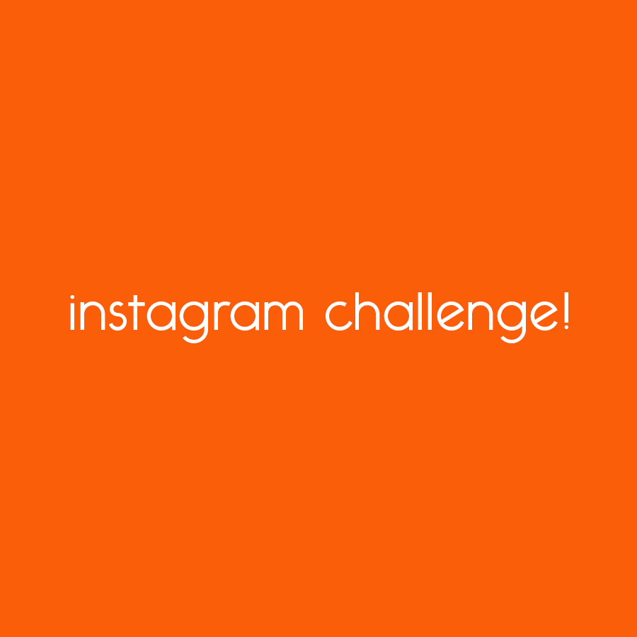 learn to secure WordPress instagram challenge! // tiny blue orange