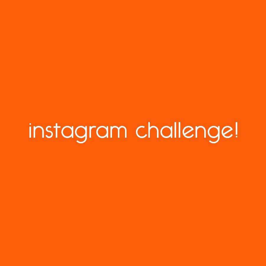 learn to secure WordPress instagram challenge! // tiny blue orange