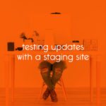 testing updates with a staging site // tiny blue orange